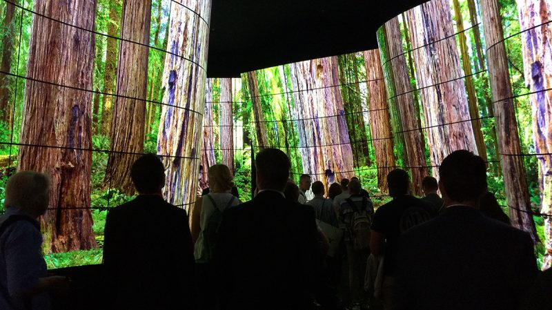 People in the LG OLED Canyon at IFA Berlin 2018